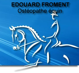 osteopathe-equin1