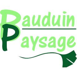 bauduin-logo